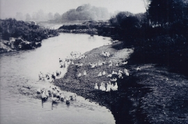 1940er Leithakanal 135AH