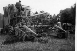 1960er bei der Ernte Götz 16HR