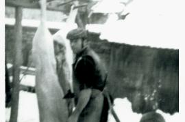 1960er W. Horwath 50LEN