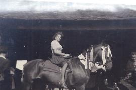 1950er K. Amri 66AH