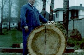 1980er F. Dürr der Stamm wird in der Mitte angerissen und auseinander geschnitten für zwei Tröge 7DÜF
