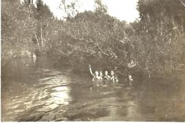 1949  Badespaß in der Leitha 189BA