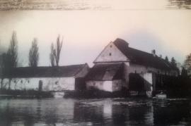1950er Sommerfrische in Zurndorf am See 36HL