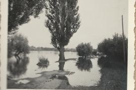 1950er Hochwasser 47GÖ