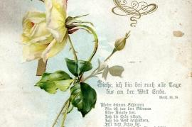 1910 Erinnerung Konfirmation E. Schmelzer 88NH