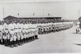 1945er R.A.D. Zurndorf 44AH