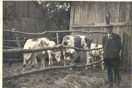 1948 J. Schmidt 10S