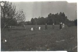 1948er Auf der Wiese 15HF