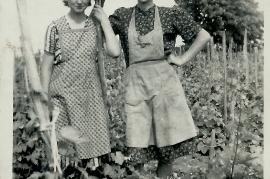 1953 im Weingarten Reben anbinden Fr. Schiermayer, E. Göbl 4ML