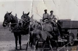 1950er J. Amri, K. Amri, H. Amri 73AH