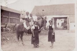 1950er vorne Mizzi Gredinger (geb. Schmidt), Maria Samek 98WS