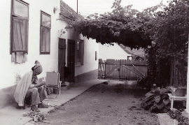 1986 Th.Wöhrer Samek 86WS